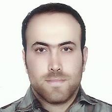 سید حافظ عرب