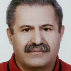 سید حسین رادمجرد