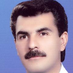 محمدرضا مرادی