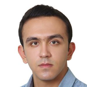 رضا شیری