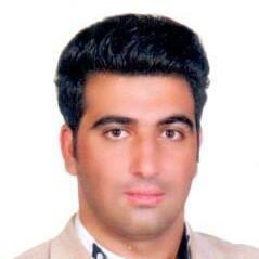سید مسلم نجفی
