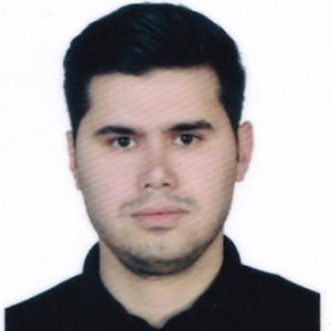 بهزاد چوبان پور