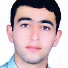 علی محمد حسنی