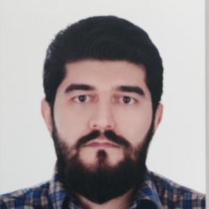 محمود سلطانی