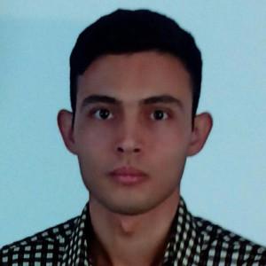 رضا احمدی