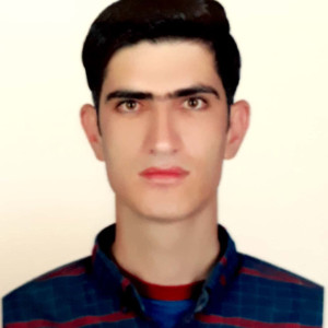 محمد حسن جعفری