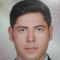 محمد رضا پاینده