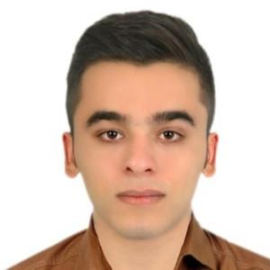 محمد رضا دانایی فر