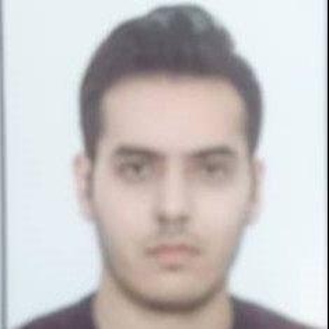 علی محمد پرتوی