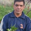 سیدمحمد پورحسینی