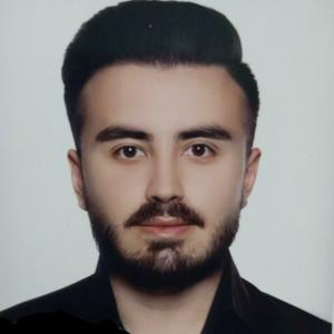 محمد مهدی شمس