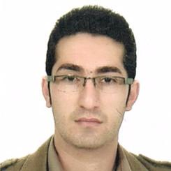 مجتبی افسری زینتی