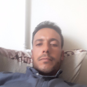وحید حبیبی