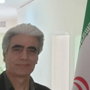 محمد رضا عامریان