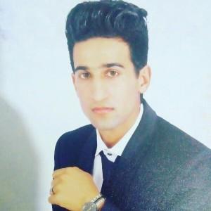 mohammadreza sarani