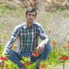 بهمن کرمی زاده